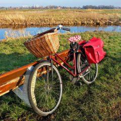 Rowerowe wakacje – dlaczego warto?